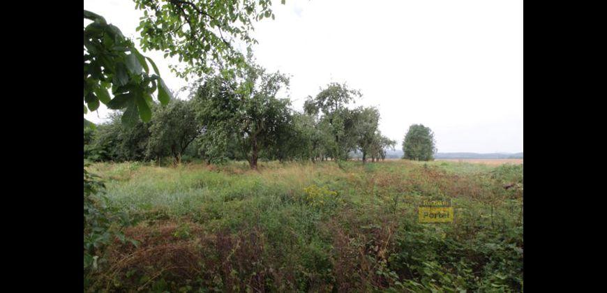 Prodej pozemku 5385m2, Olešná
